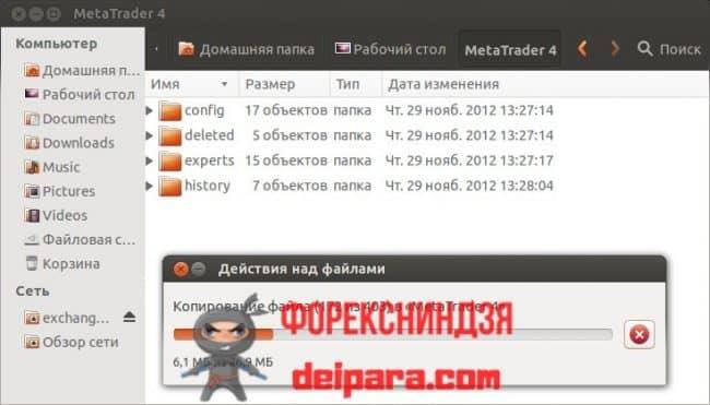 Рисунок 3. Копирование с носителя файлов MetaTrader 4 в Linux.