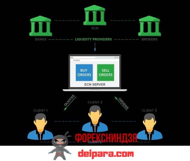 Рисунок 3. Наивысшие места в рейтинге форекс-банков занимают компании имеющие лицензии и предлагающие ECN-счета.