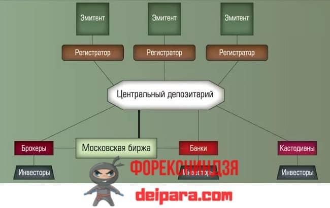 Рисунок 1. Схема взаимодействия депозитария ценных бумаг с другими участниками финансового рынка.