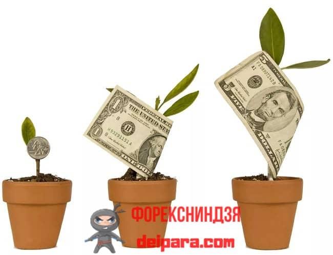 Рисунок 1. Знание основных правил и законов как начать инвестировать деньги гарантирует финансовую независимость.