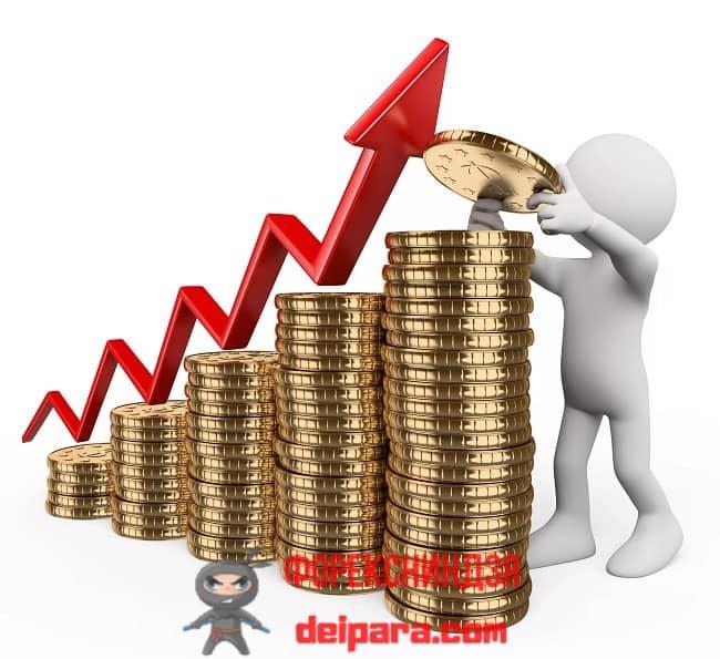 Рисунок 1. Применяя пошаговую инструкцию по применению ИИС индивидуального инвестиционного счета, можно заработать при минимальном риске.